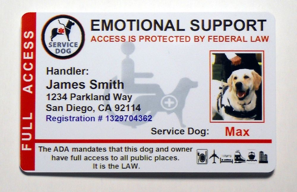 Emotional Support Animal Certificate